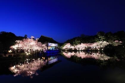京都・平安神宮にて今年も開催『平安神宮 紅しだれコンサート』平成最後の調べを艶やかに奏でるコンサート