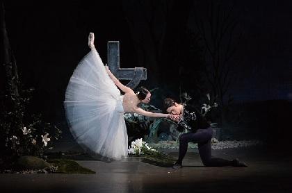 新国立劇場バレエ団『ジゼル』 ~アルベルトってどんなキャラ? バレエマスター・菅野英男が語る『ジゼル』