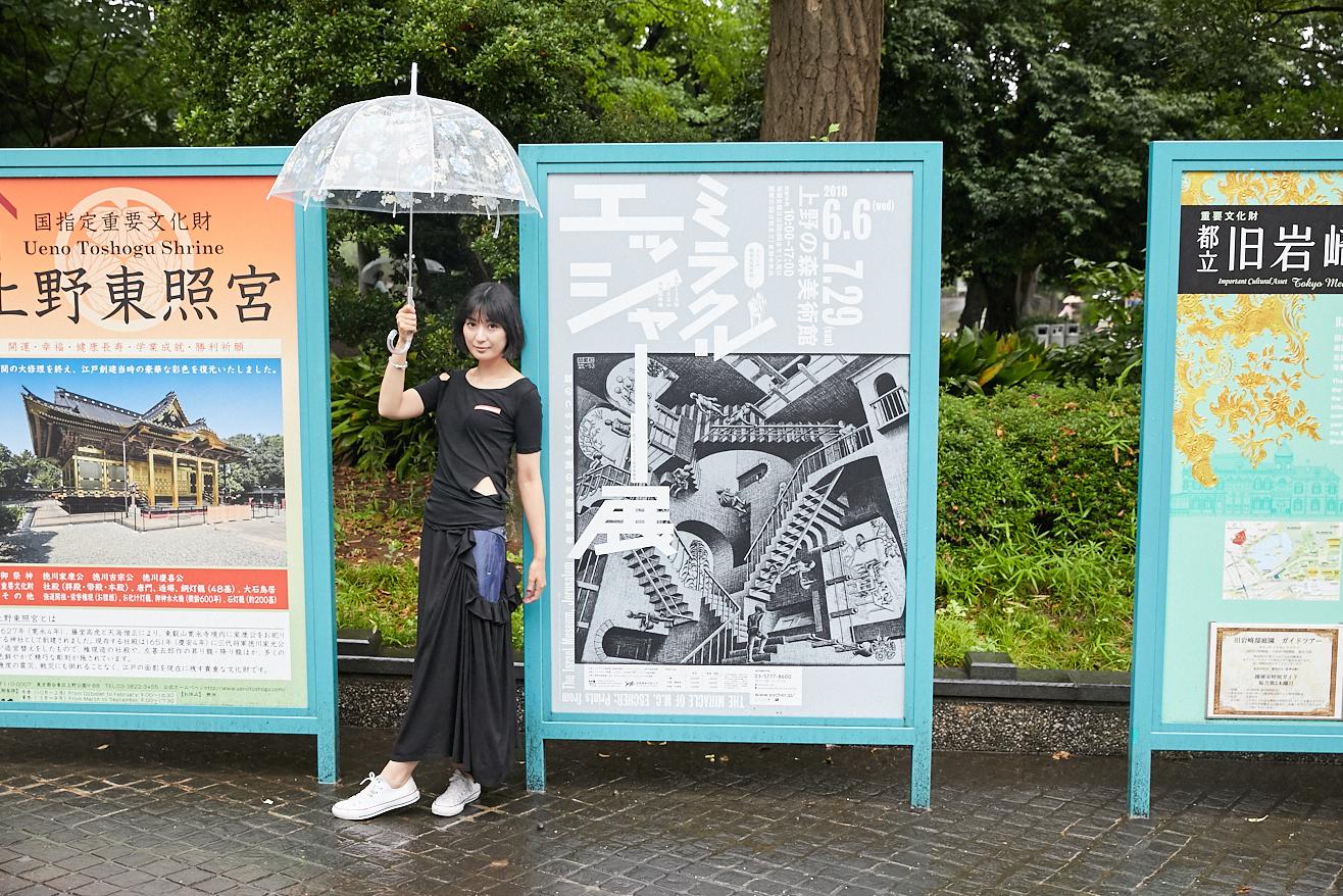 上野の森美術館がある上野恩賜公園内や公園周辺の各所に、『ミラクル エッシャー展』のポスターが