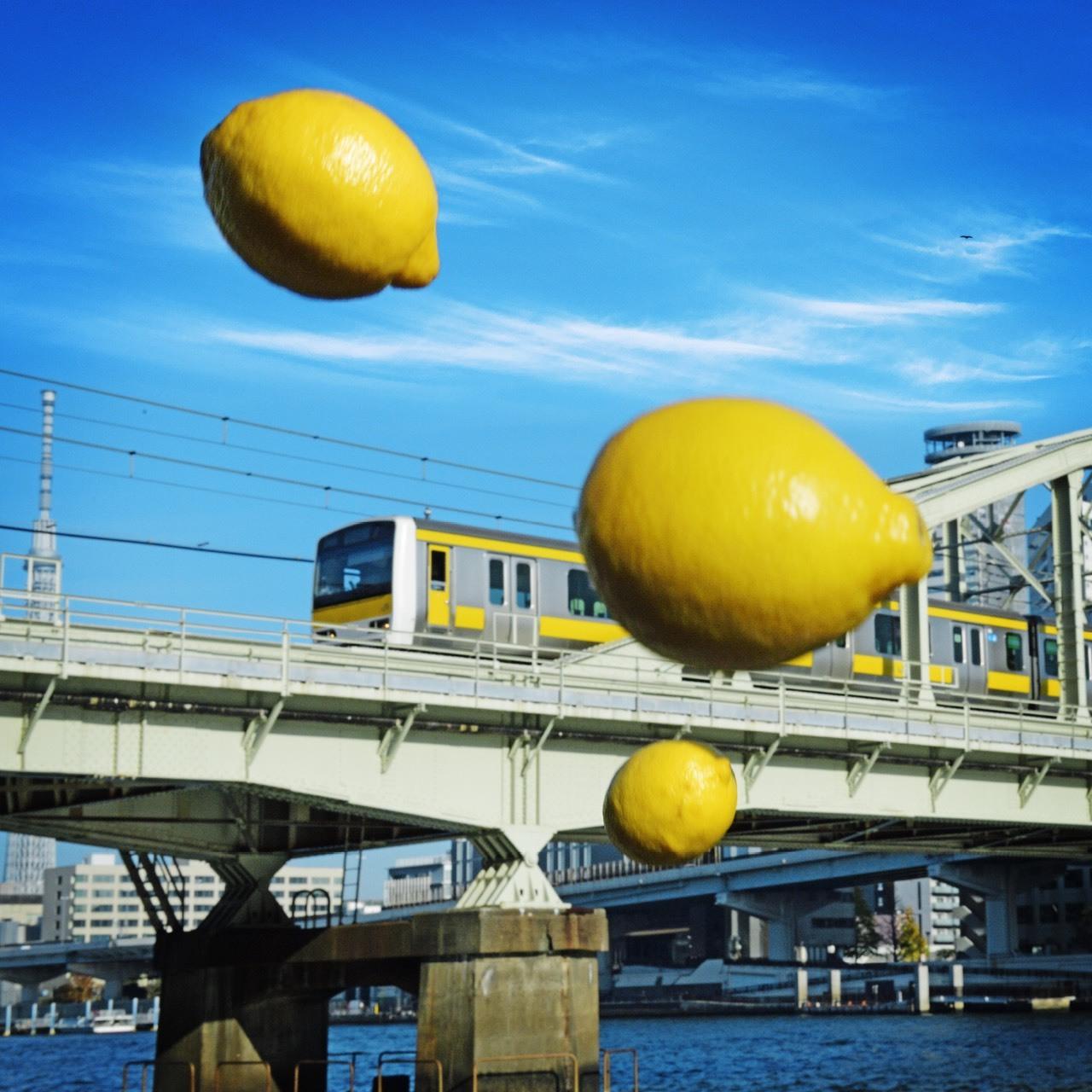 「15予告版」●檸檬盤