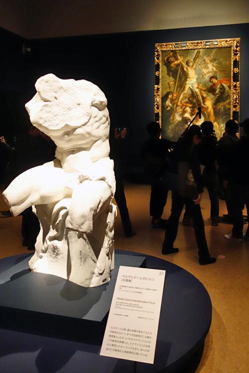 《ベルヴェデーレのトルソ(石膏像)》ローマ、ラ・サピエンツァ大学古典美術館