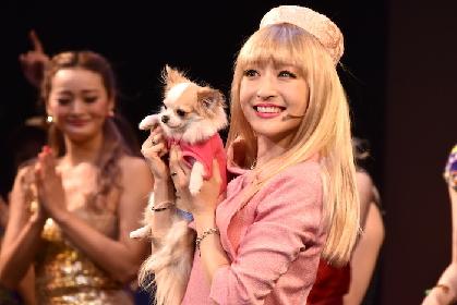 神田沙也加が再び魅せる! ミュージカル『キューティ・ブロンド』ゲネプロレポート