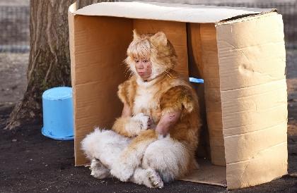 Kis-My-Ft2北山宏光、ネコ姿に「この役にすごくやりがいを感じています」 映画『トラさん』劇中カットを解禁