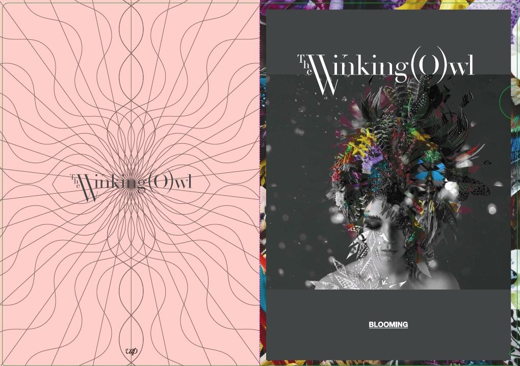 The Winking Owl 特典クリアファイルイメージ