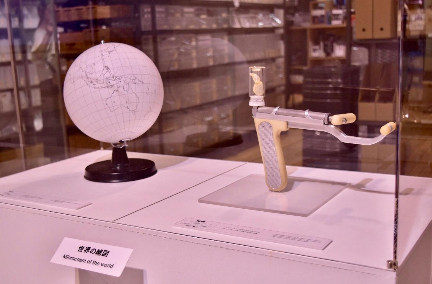 左:地球儀(無印良品)右:肺魚(明和電機)