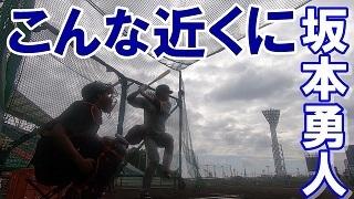 宮崎や那覇だけでなく、一軍S班による東京ドームでのキャンプ映像も配信する