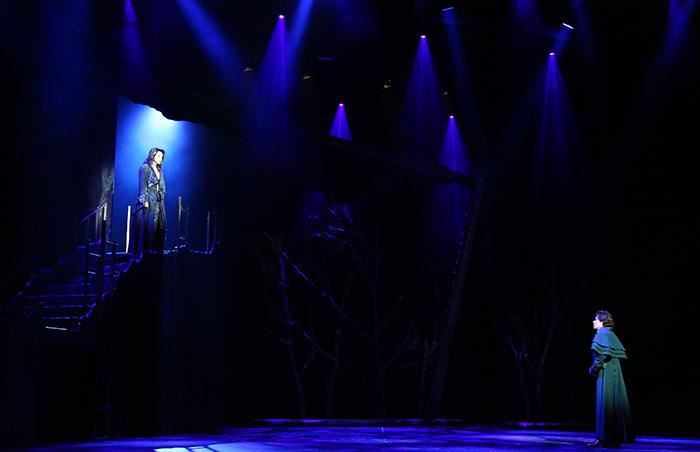 ミュージカル『フランケンシュタイン』2017年初演より 写真提供/東宝演劇部