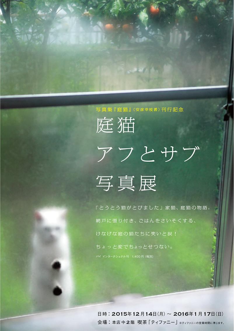 庭猫アフとサブ写真展