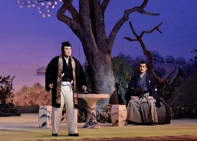 尾上菊五郎・片岡仁左衛門ら出演 歌舞伎座『四月大歌舞伎』4月2日初日開幕レポート