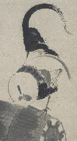 伊藤若冲や歌川広重らが描いた「鳥」をテーマにした展覧会『トリを描く・トリを愛でる』