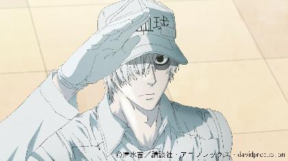 TVアニメ『はたらく細胞』全13話を無料公開 YouTube『ボンボンTV』にて12月期間限定で