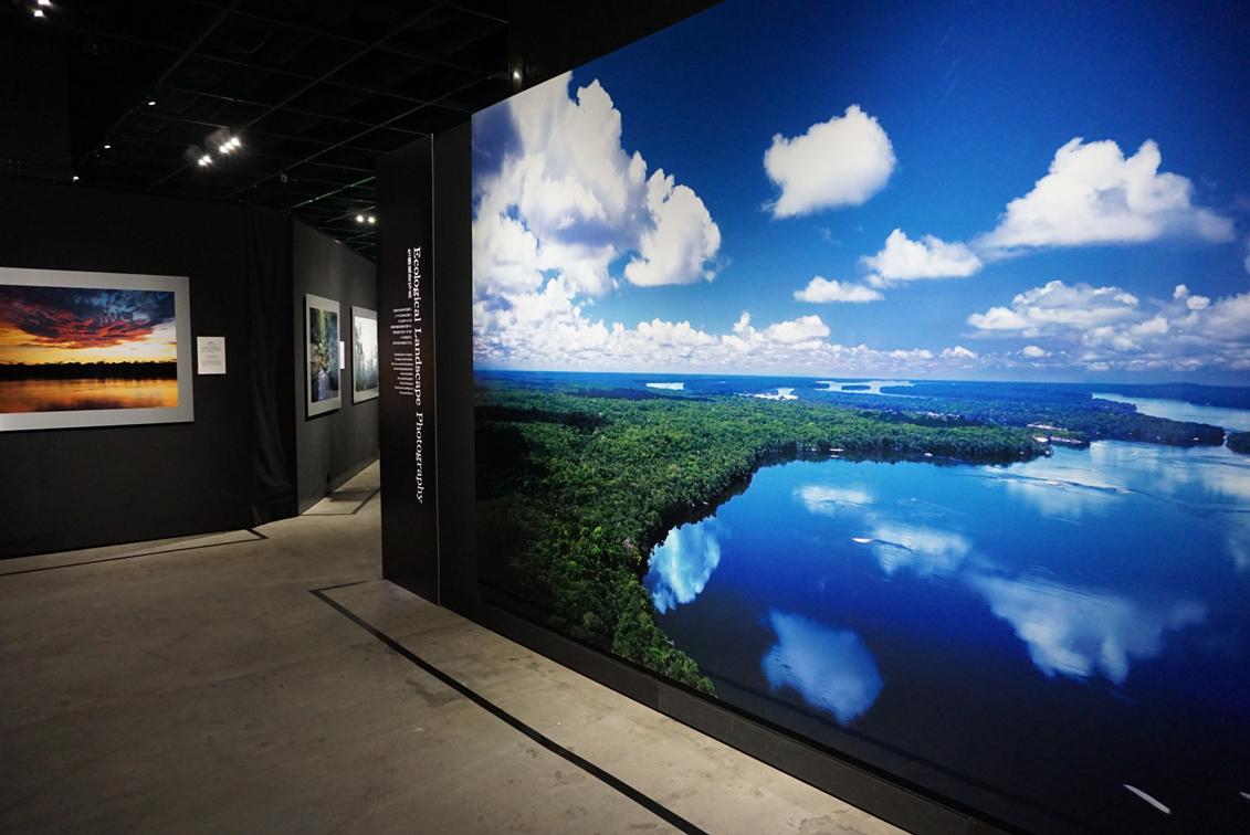 天野尚「遥かな地平線」1999年12月下旬 アマゾン ネグロ川 ジャッカミ山