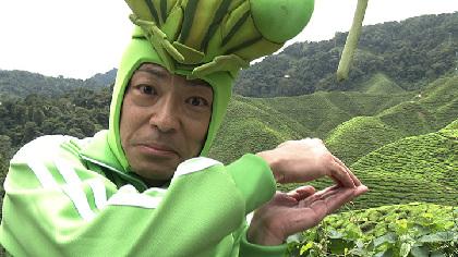 『香川照之の昆虫すごいぜ!』初の海外ロケでマレーシアへ 元日放送