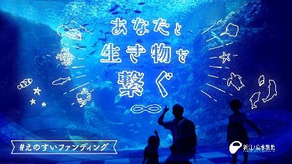 """新江ノ島水族館が""""あなた""""と""""生き物""""を繋ぐ「えのすいファンディング」開始"""