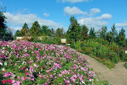 フランス印象派がモチーフの庭園・ガーデンミュージアム比叡で、秋のイベントが多数開催