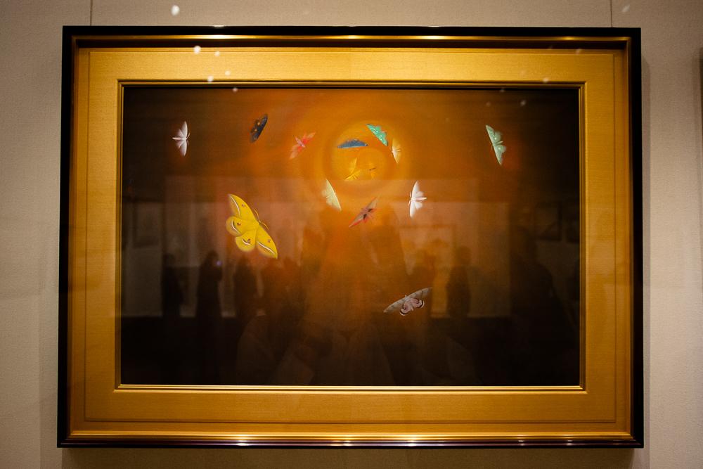 速水御舟《昆虫二題 葉蔭魔手・粧蛾舞戯》のうち「粧蛾舞戯」1926(大正 15)年 山種美術館