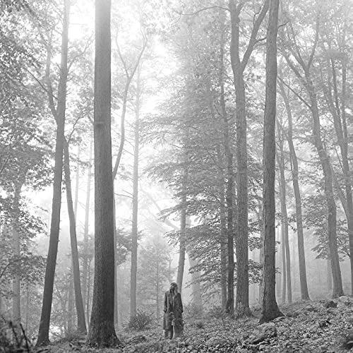 テイラー・スウィフト(Tayler Swfit)『フォークロア(folklore)』