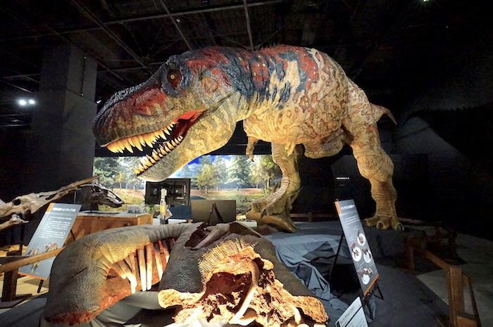 ティラノサウルス ロボット (C)ココロ