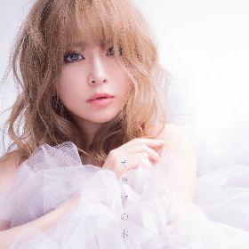 『M 愛すべき人がいて』最終回からゲリラリリース 浜崎あゆみ約2年ぶりのニューシングル「オヒアの木」配信がスタート