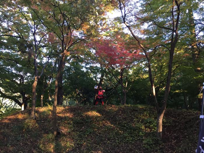 武田神社 土塁の上の兜
